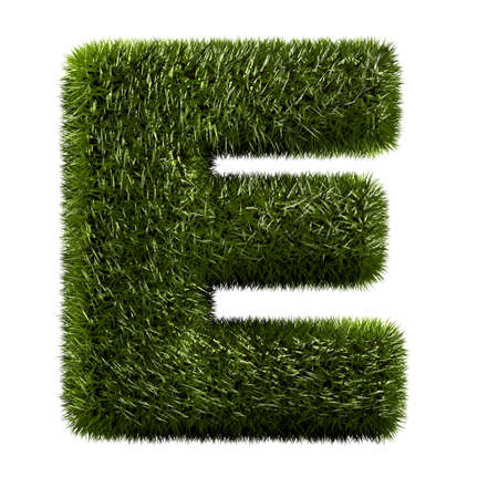 grass alphabet - E photo