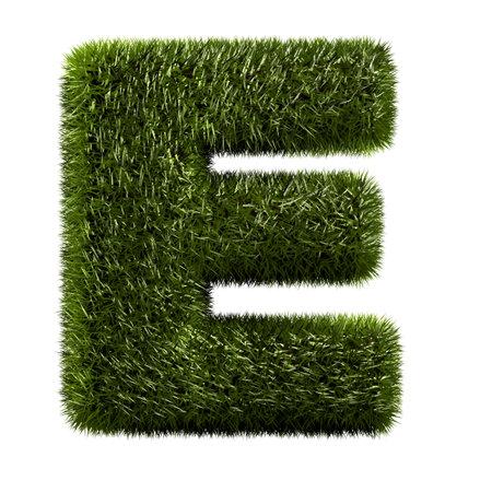 grass alphabet - E Stock Photo - 11090763