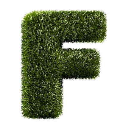 grass alphabet - F photo