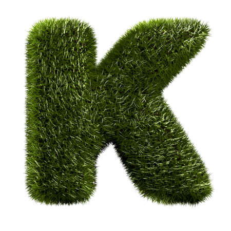 grass alphabet - K photo