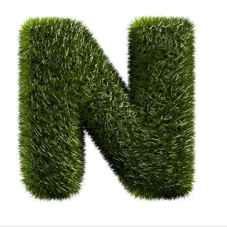 grass alphabet - N photo