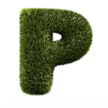 grass alphabet - P Stock Photo - 11090749