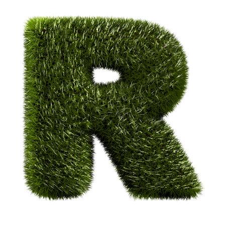 grass alphabet - R Stock Photo - 11090765