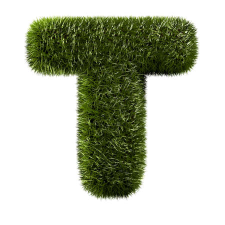 grass alphabet - T photo