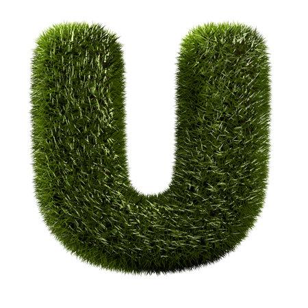 letter u: grass alphabet - U