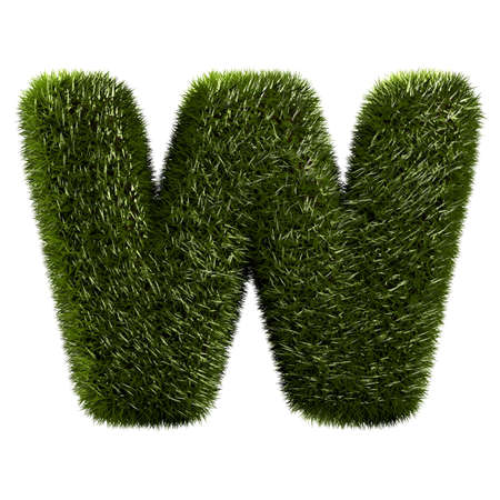 grass alphabet - W photo