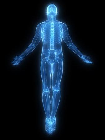 scheletro umano: corpo in aumento - x-ray