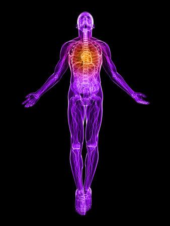 cuerpo transparente hombres con el corazón destacado