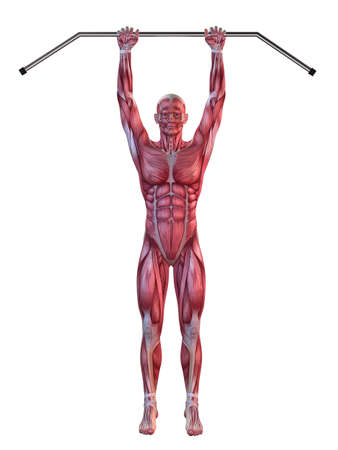 hang body: male workout - hanging leg raises