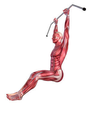 male workout - hanging leg raises  Stock Photo - 11073125