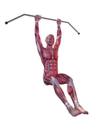 male workout - hanging leg raises  photo