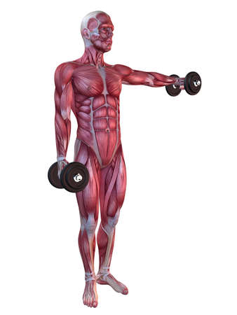 male workout - shoulder workout  photo