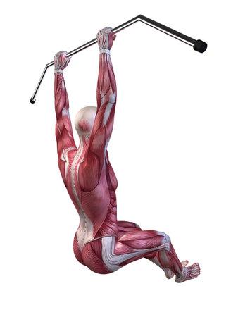 male workout - hanging leg raises Stock Photo - 11073184
