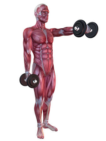 male workout - shoulder workout  Stock Photo - 11062798