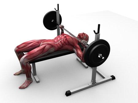 male workout - bench press