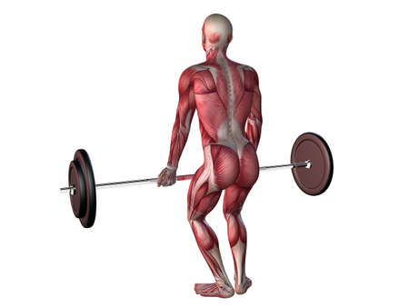 male workout - deadlifts  Stock Photo - 11062725
