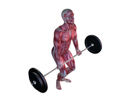male workout - deadlifts  photo