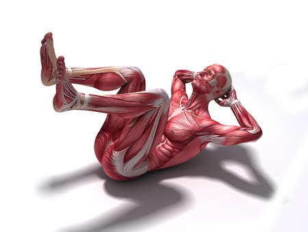 homo: male workout - crunches  Stock Photo
