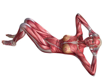 facial muscles: female abs workout  Stock Photo