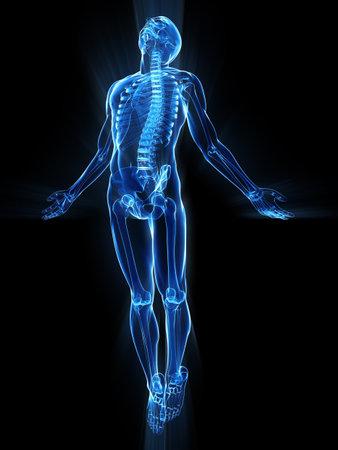 esqueleto humano: levantamiento del cuerpo Foto de archivo