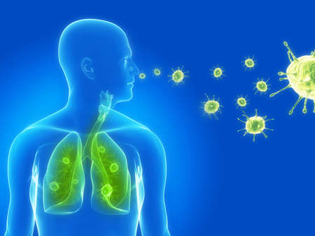 influenza: virus infection