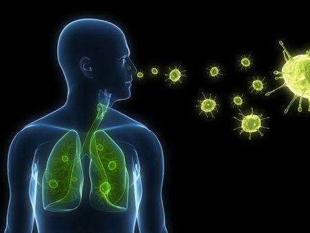 polmone: infezione da virus