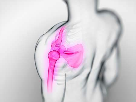 3d rendered scientific illustration of a painful shoulder illustration