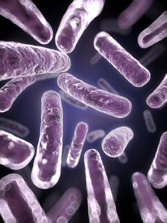 bakterien: 3d gerenderten wissenschaftliche Illustration einiger Bakterien