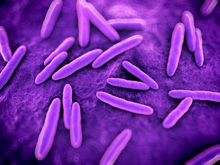 microscopisch: 3d teruggegeven illustratie van wetenschappelijke sommige bacteriën Stockfoto