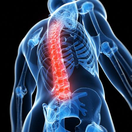 columna vertebral: 3d rindi� la ilustraci�n de una espalda dolorosa Foto de archivo