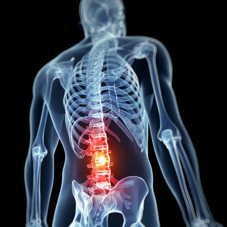 anatomia: 3d rindi� la ilustraci�n - dolor de espalda Foto de archivo
