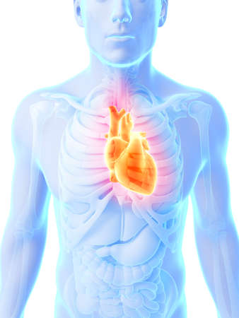 heart pain: 3d rendered illustration - heart attack