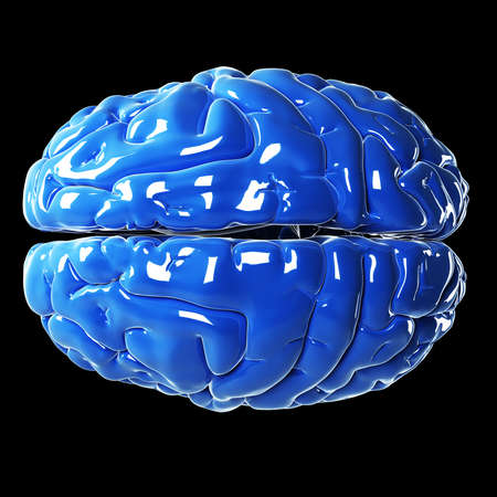 3d rendered illustration - glossy blue brain Stock Illustration - 18071515