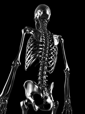 human bones: 3d rendered illustration - metal skeleton Stock Photo