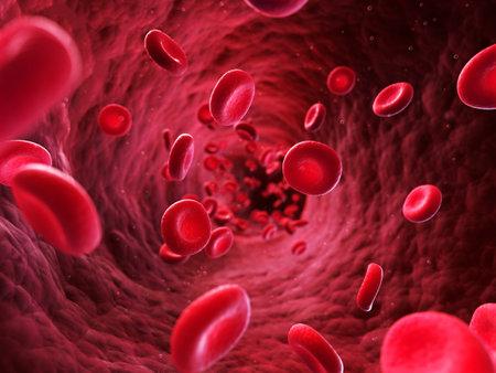 globulo rojo: 3d rindi� la ilustraci�n - las c�lulas sangu�neas