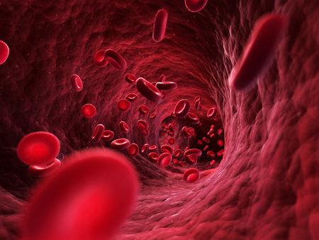 globulo rojo: 3d rindió la ilustración - las células sanguíneas