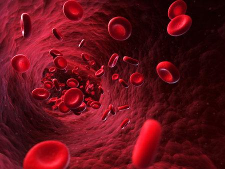 3d rendered illustration - blood cells illustration