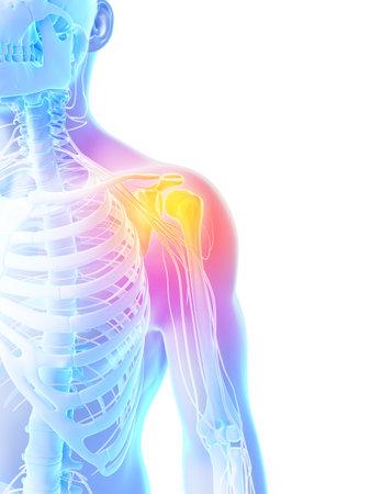scheletro umano: Illustrazione di rendering 3D - spalla dolorosa