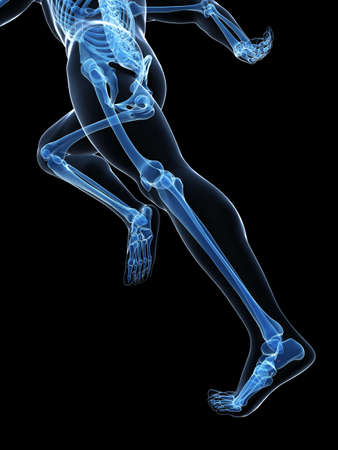 3d rendered illustration - runner anatomy Stock Illustration - 18070919