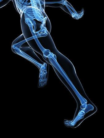 3d rendered illustration - runner anatomy Stock Illustration - 18070919