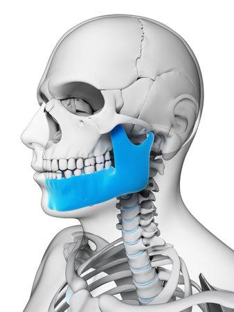 3d rendered illustration - jaw bone Stock Photo