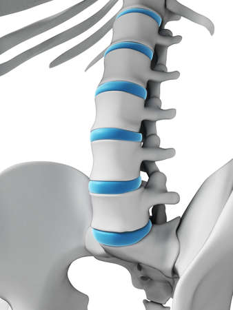 chronic back pain: 3d rendered illustration - human spine
