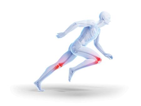 joints: 3d rendered illustration - sprinter
