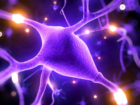 human anatomy: 3d rindi� la ilustraci�n - c�lula nerviosa
