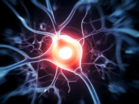 anatomia humana: 3d rindi� la ilustraci�n - c�lula nerviosa