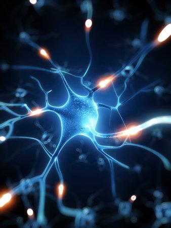 3d rendered illustration - nerve cell Imagens