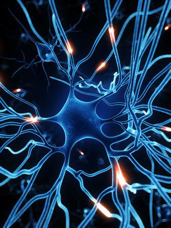 cellule nervose: Illustrazione di rendering 3D - cellule nervose