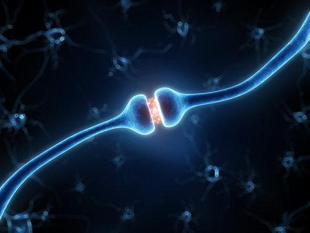 cellule nervose: 3d ha reso l'illustrazione di un recettore attivo
