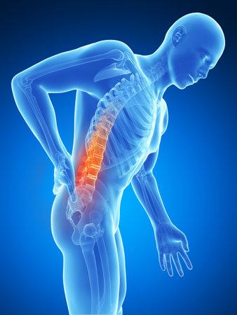 adult bones: 3d rendered illustration - backache male
