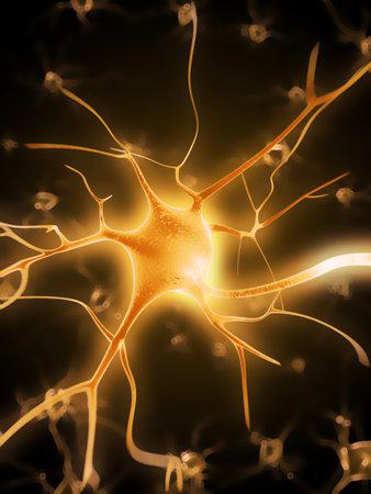 cellule nervose: 3d ha reso l'illustrazione di una cellula nervosa